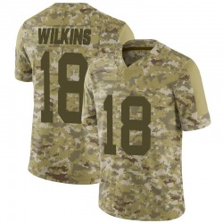 Manny Wilkins Green Bay Packers Men's Limited 2018 Salute to Service Jersey - Camo